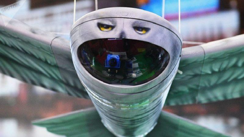 Un nouveau drone espion russe passe inaperçu parce qu'il ressemble à ce rapace