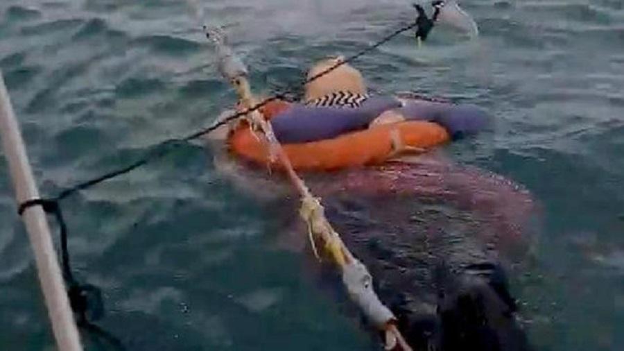 Disparue il y a deux ans, une femme de 46 ans retrouvée vivante en pleine mer