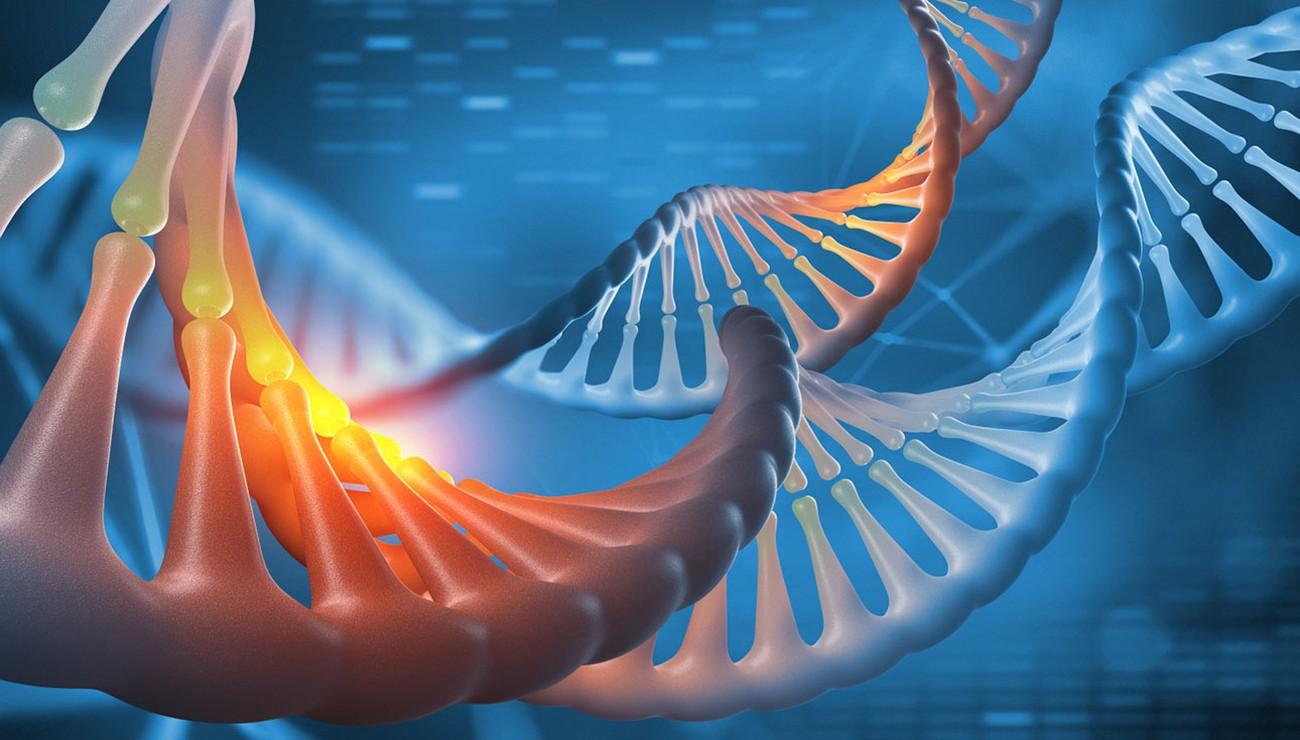 Les scientifiques disent qu'ils ont enfin séquencé l'ensemble du génome humain. Oui, tout ça.